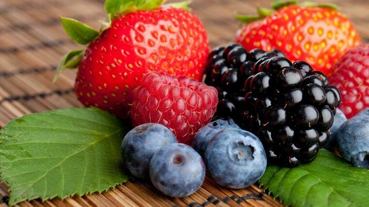 frutas y verduras bayaas