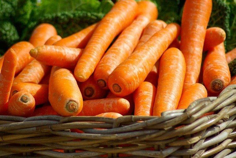 frutas y verduras zanahorias