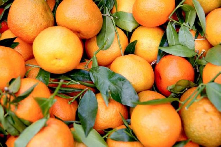 mandarinas-beneficios-homberes-ideas
