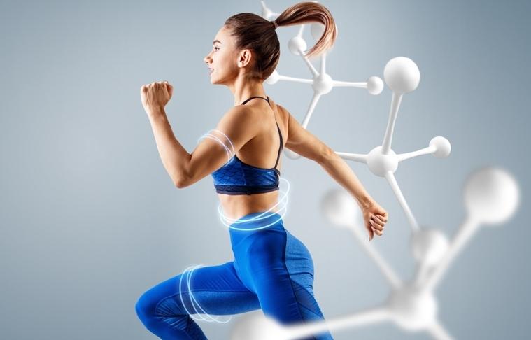 metabolismo basal activo