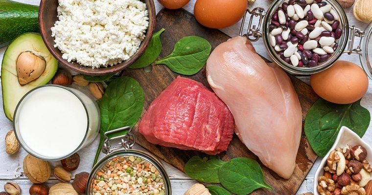 metabolismo basal proteina