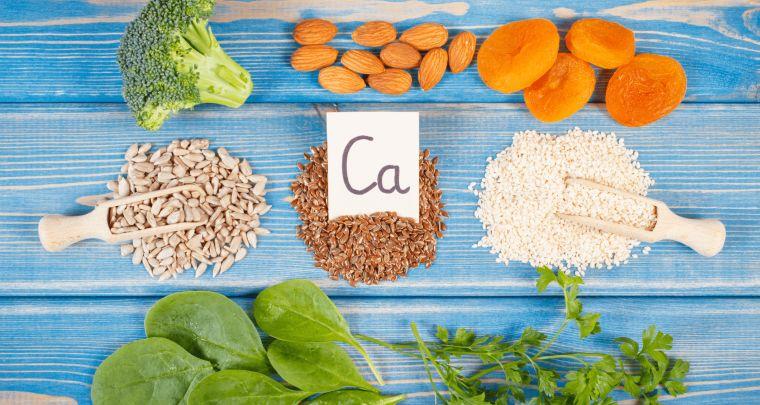 sistema inmune calcio