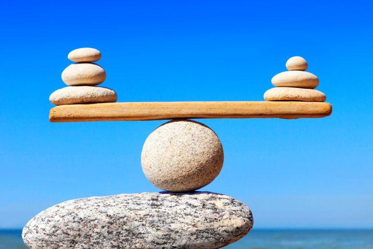 sistema inmune equilibrio