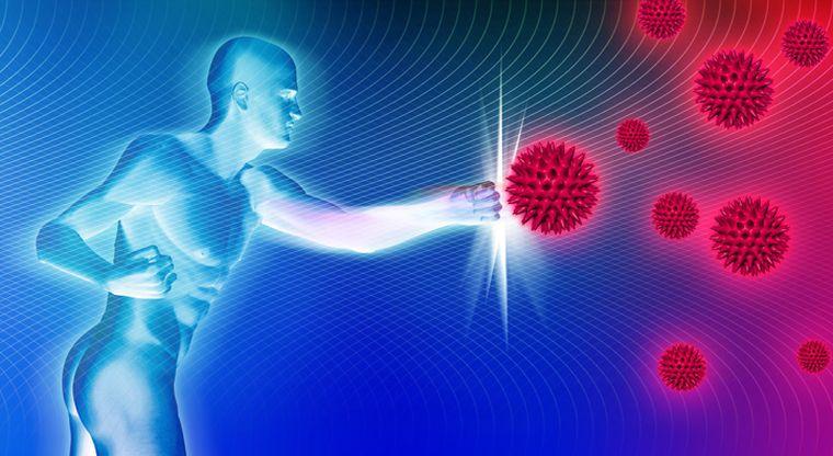 sistema inmune proteccion