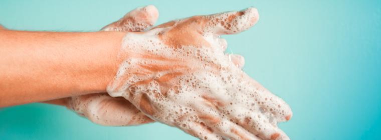 sistema inmunológico limpio
