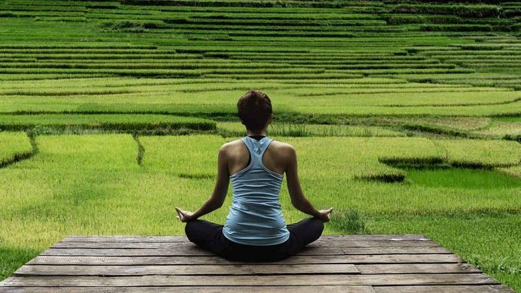 sistema inmunológico meditar