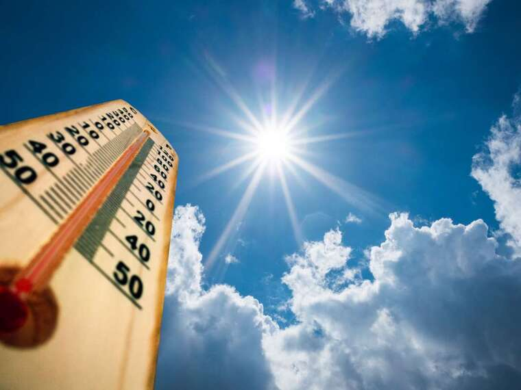 sistema inmunológico temperatura