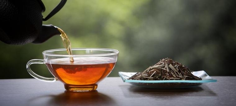 Té detox – Los mejores tés para desintoxicar el cuerpo naturalmente