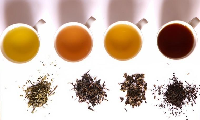 diferentes tipos de tés