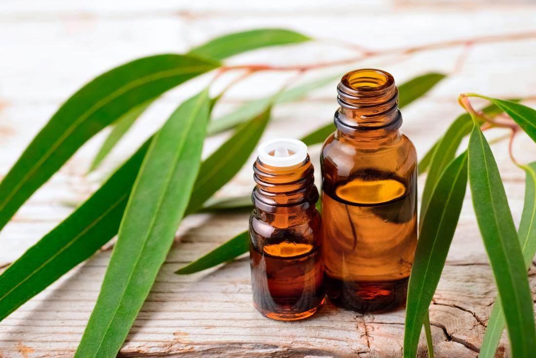 aceites-esenciales-puros-flores-eucalipto