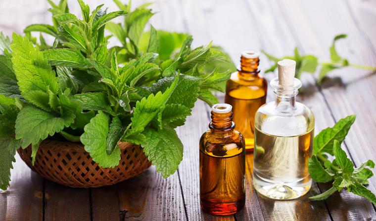 aceites-esenciales-puros-pachuli