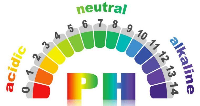 alcalinizar el cuerpo pH equilibrios