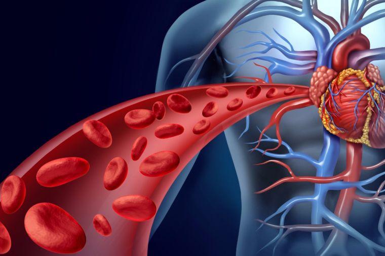 alcalinizar elcuerpo sangre