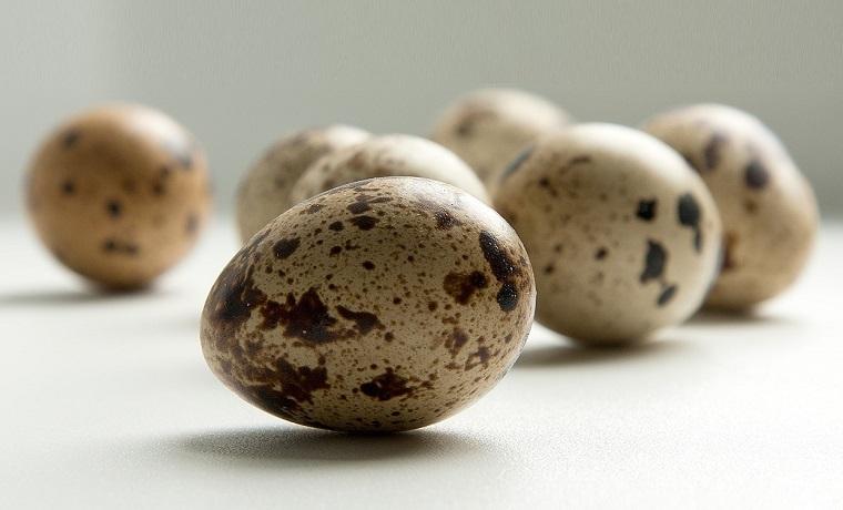 alimentos afrodisíacos-aumentar-libido-huevos-codorniz