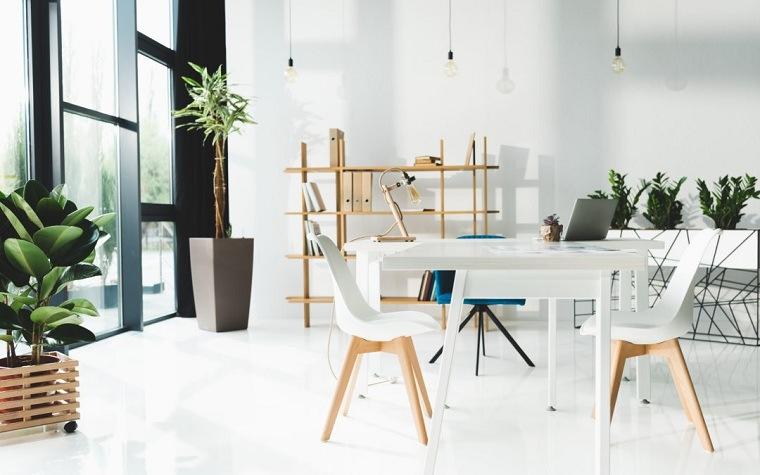 feng-shui-plantas-interior-casa-luminosa