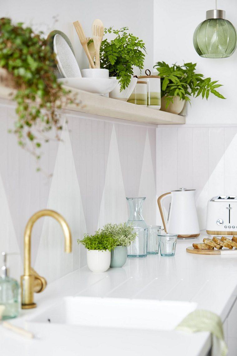 feng-shui-plantas-interior-cocina