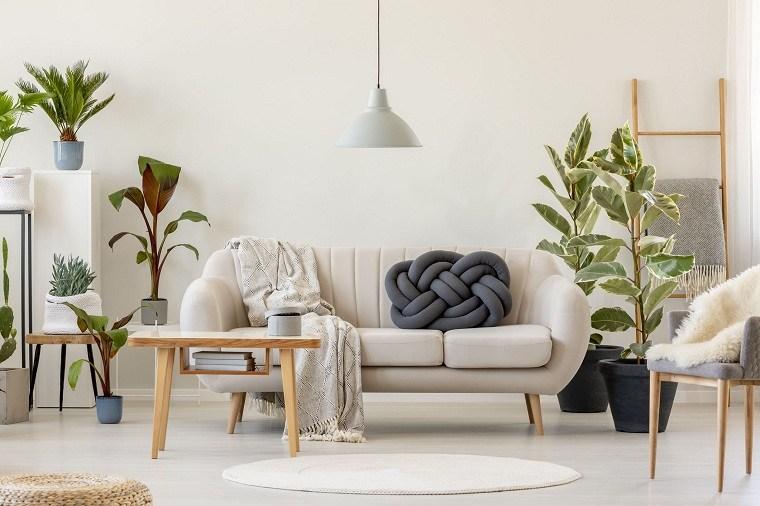 feng-shui-plantas-interior-plantas-estilo