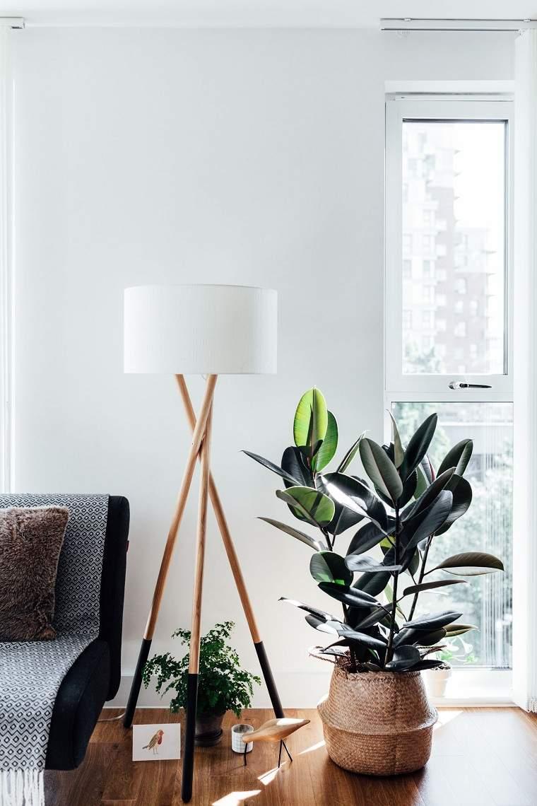 feng-shui-plantas-interior-sala-ventana