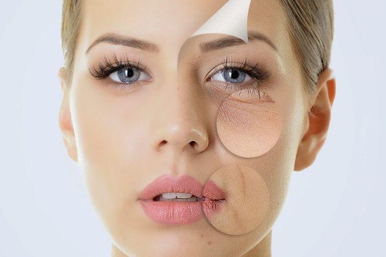 propiedades del colágeno piel