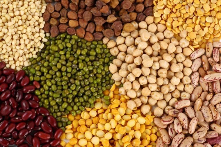 tipos de cereales-legumbres
