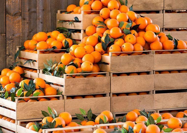 vitaminas para el cabello mandarinas