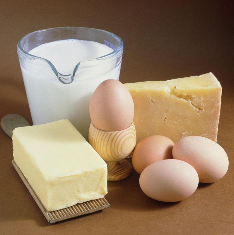 alimentos integrales lacteos