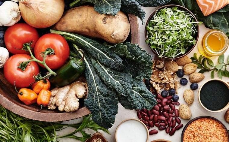 alimentos integrales planta
