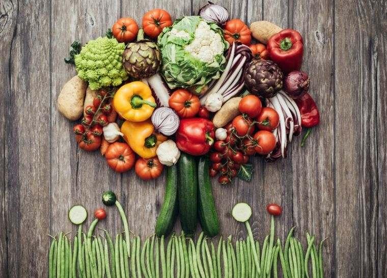 alimentos integrales vida