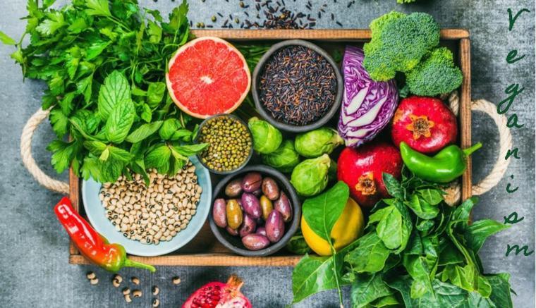 Una dieta vegana no incluye productos animales ni subproductos animales