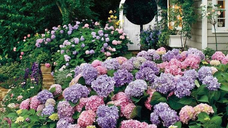 el jardín vida