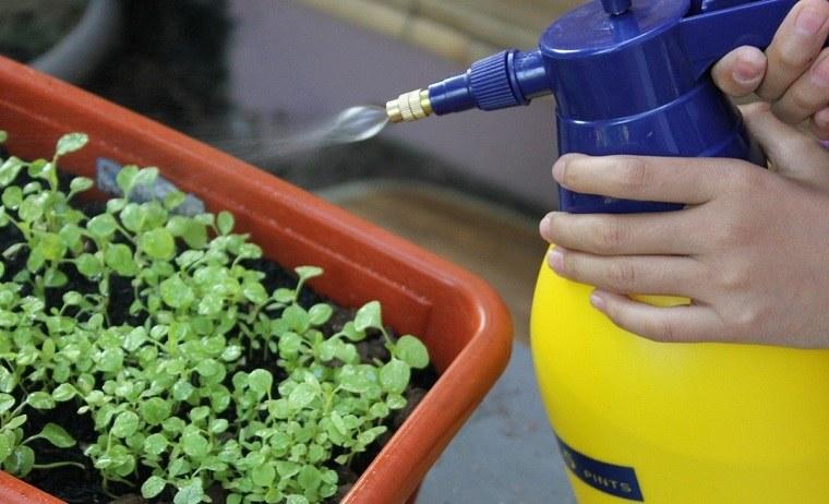 limpiar-ideas-jardin-primavera