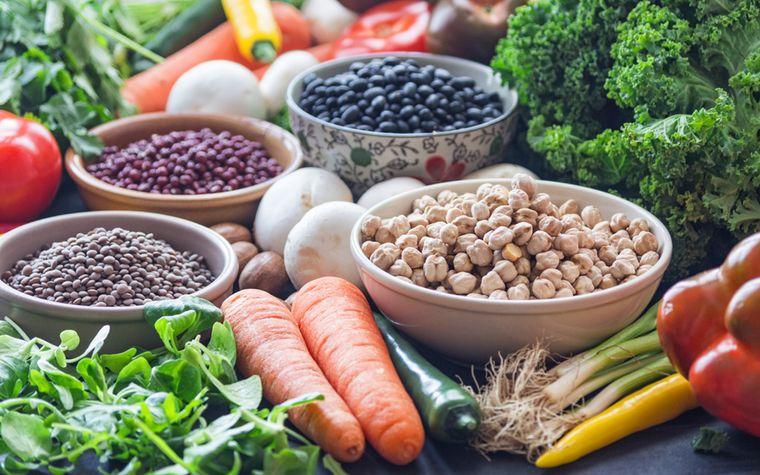 nutrición calcio