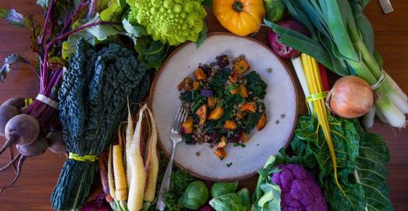 nutrición organica