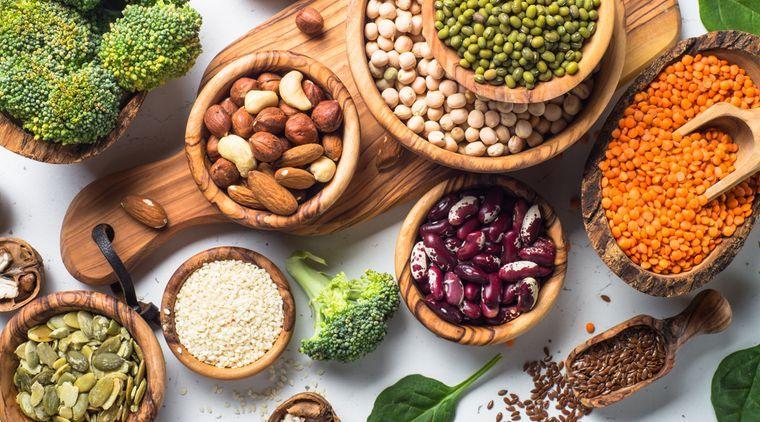 nutrición proteina