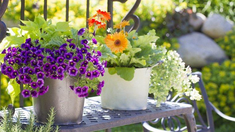 primavera 2020-flores-jardin