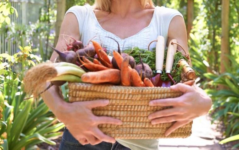 Los principios básicos de una dieta basada en plantas y alimentos integrales