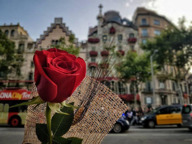 san valentín española