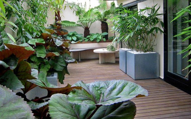 terrazas-balcones-decoracion-estilo-tropical