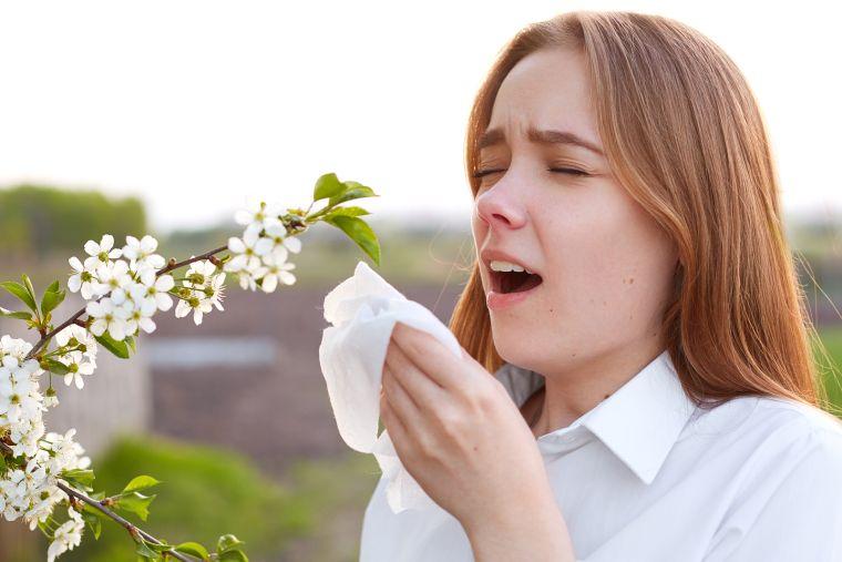 alergia primaveral inicio
