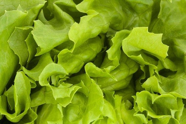 alimentos-verdes-mejor-salud-lechuga-ideas
