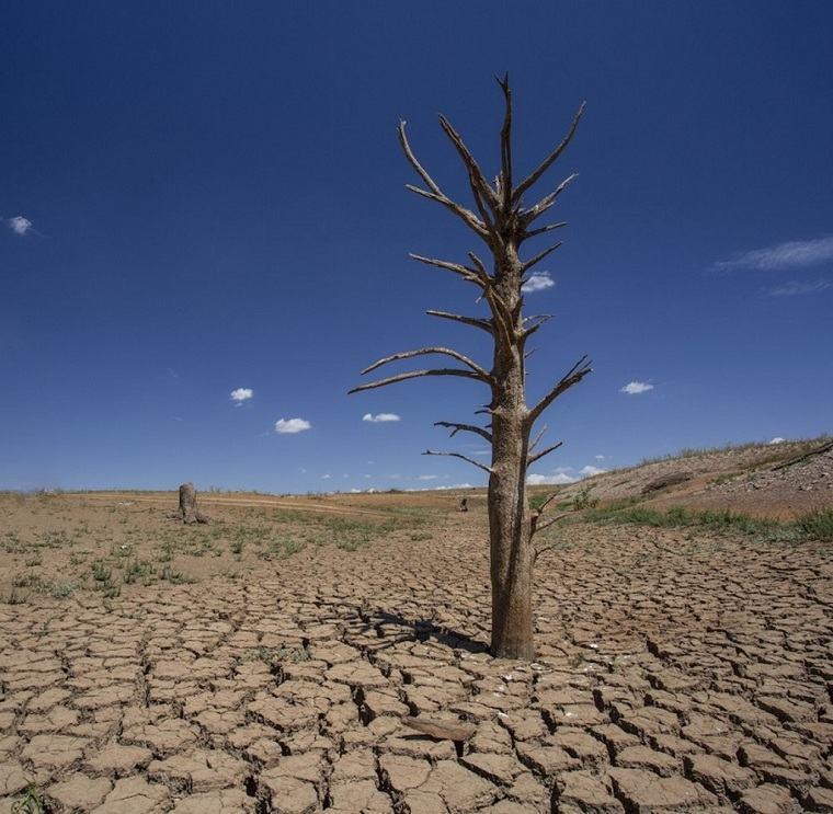 Cambio climático-2019-tierra.