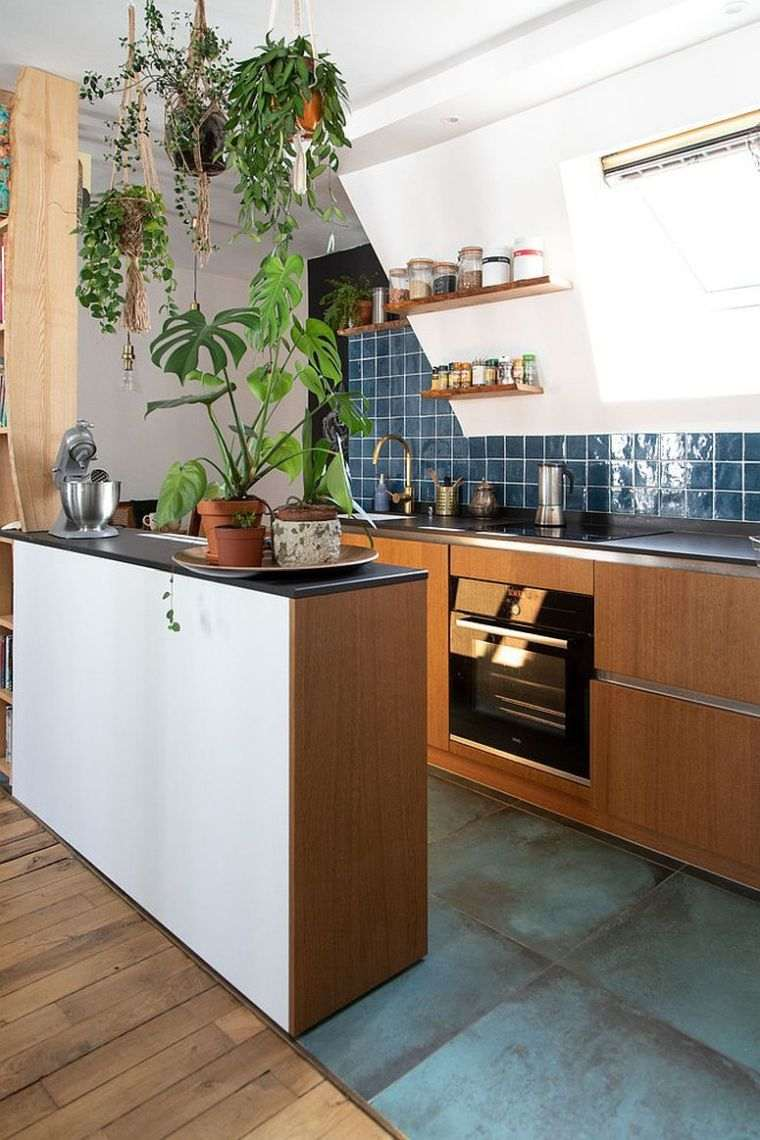 cocinas pequeñas plantas