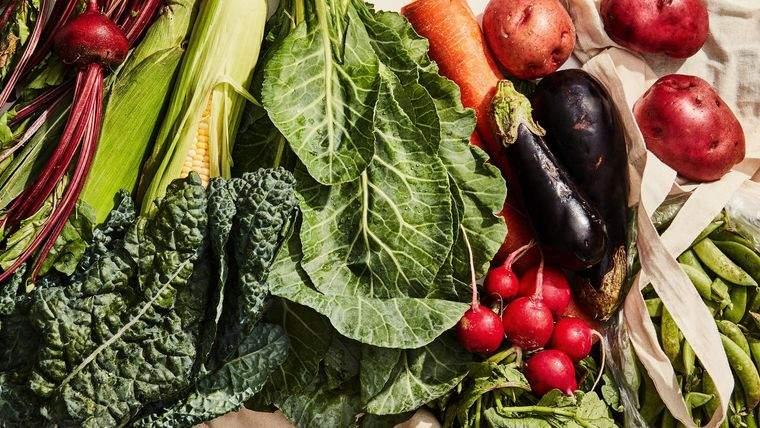 consejos saludables vegetales