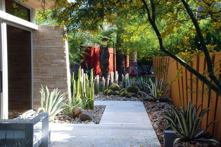diseno de jardines fotos-cactus