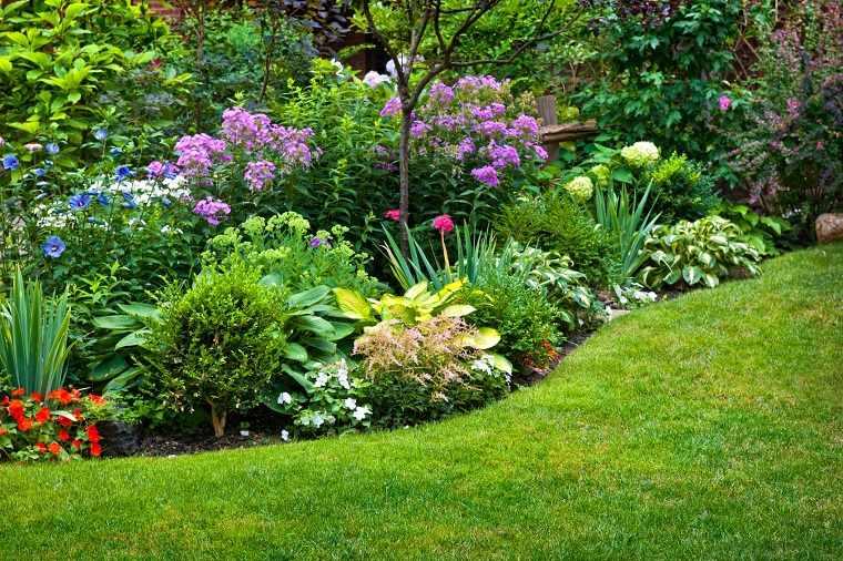 Flores perennes -jardin-consejos