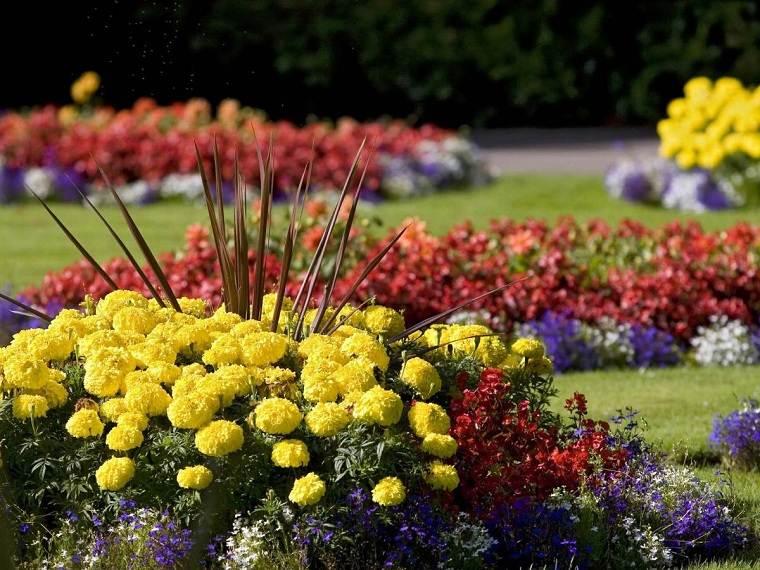 Flores perennes-jardin-ideas-color-amarillo