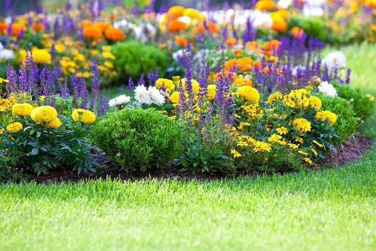 flores-perennes-jardin-ideas-color-casa