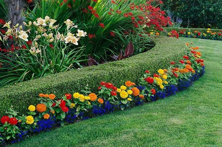 flores-perennes-jardin-ideas-crear-interes