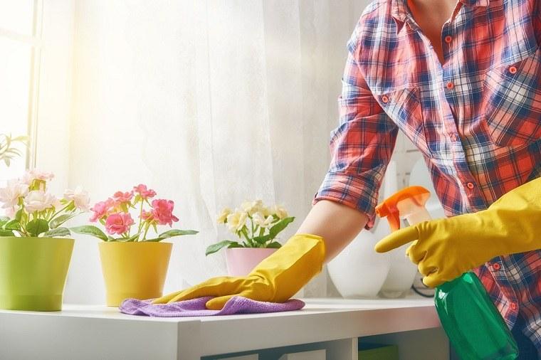 productos-naturales-limpiеza-primaveral