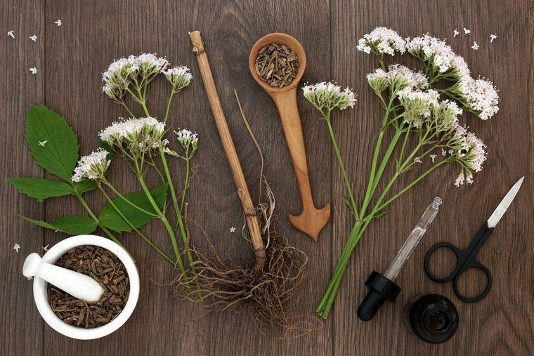 remedios naturales para dormir valeriana